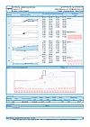 GEO5 Böschungsbruch - einen Ausgabenbericht